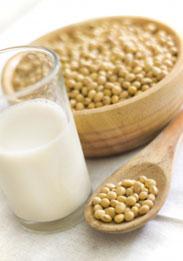 wofür sind proteine gut